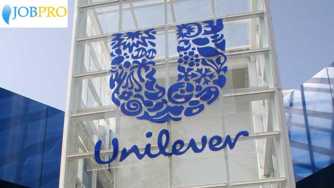 Nộp CV tới tập đoàn Unilever