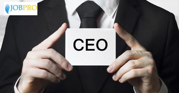 Nhiệm vụ và quyền hạn của CEO trong doanh nghiệp