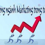 Ngành truyền thông – Marketing